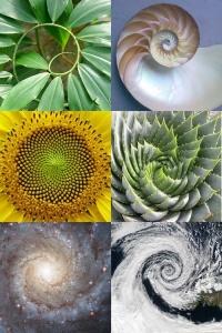 Pantheism symbols/spirals